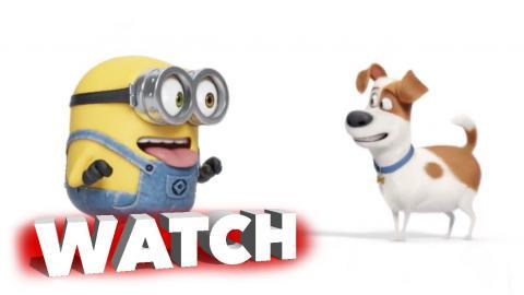 The Secret Life of Pets and Minions: Max Meets Bob