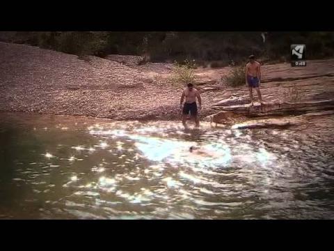 El 'Ecosemanario' nos propone actividades de verano